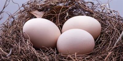 減肥粥:寒天雞蛋韭菜粥的做法